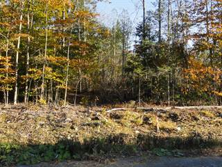 Land for Sale Sheepscot Pond, ME - Vacant Lots for Sale in Sheepscot