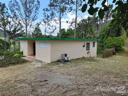 Farm And Agriculture for sale in Aibonito Cuyon, Cuyon, PR, 00705