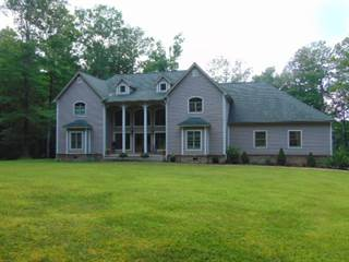Single Family for sale in 88 RIDGE RUN ROAD, Mt. Lookout, WV, 26678