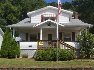 Single Family for sale in 277 Alley Addition St, Pine Grove, WV, 26419