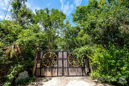 Farm And Agriculture for sale in Rancho Aluxes de Balam, Akumal, Quintana Roo
