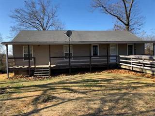 Single Family for sale in 0 RR 5 Box 1335, Hwy 51N, Patton, MO, 63662