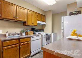 1-Bedroom Apartments for Rent in Tuscaloosa County, AL ...