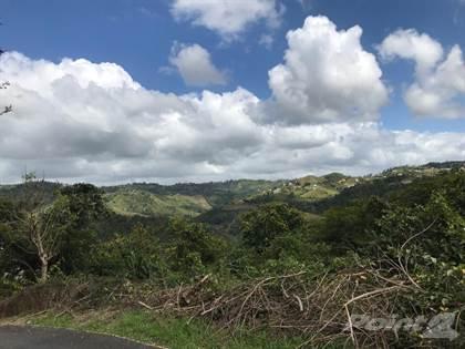 Lots And Land for sale in BARRIO LA ROCA (repo), Corozal, PR, 00783