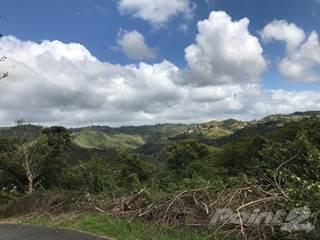 Land for sale in BARRIO LA ROCA- COROZAL (REPO), Corozal, PR, 00783