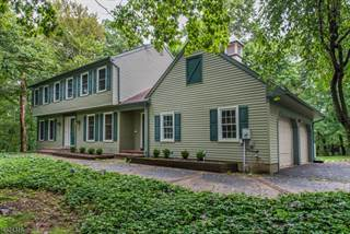 Single Family for sale in 294 PLEASANT GROVE RD FL, Greater Long Valley, NJ, 07853