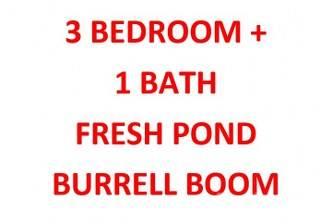 Residential Property for sale in 3 BEDROOM + 1 BATH IN BURRELL BOOM VILLAGE, Burrel Boom, Belize