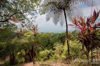 Lots And Land for sale in Tower Road Property, Golfito (canton), Puntarenas
