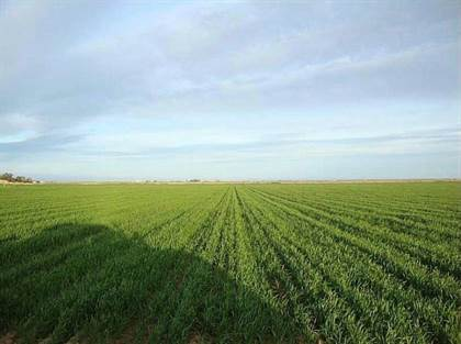 Farm And Agriculture for sale in Tbd DANFORD ROAD, Billings, MT, 59106