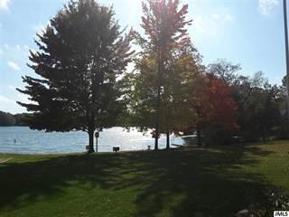 Land for sale in Lot 188 WESTSHORE DR, Clarklake, MI, 49249