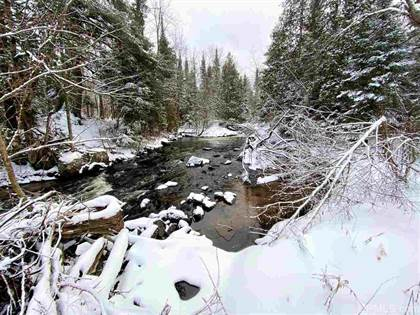 Lots And Land for sale in TBD Beckman, Skandia, MI, 49885