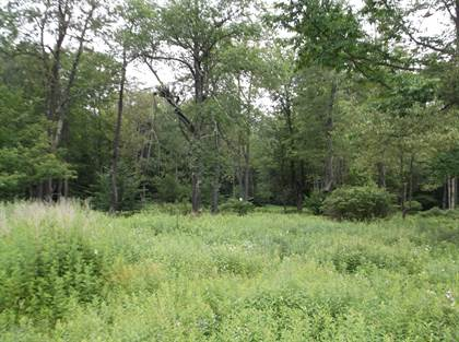 Lots And Land for sale in T 591 Pocono Heights Rd 5.18 Ac. +/-, Tobyhanna, PA, 18466