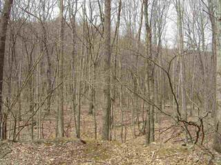 Farm And Agriculture for sale in 5723 DOE HILL RD, Sugar Grove, WV, 26815