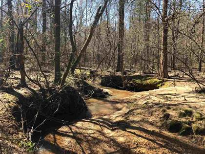 Lots And Land for sale in 00 DIXON CIR, Duck Hill, MS, 38925