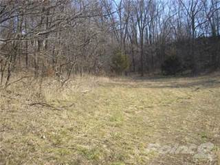 Land for sale in S West Line Rd., Cleveland, MO, 64734