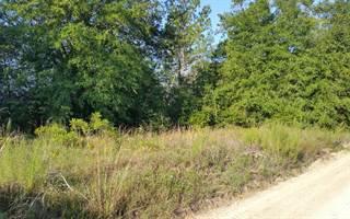 Land for rent in TBD 14TH TRAIL, Live Oak, FL, 32060