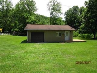 Single Family for sale in 10602 Mountaineer Highway, New Martinsville, WV, 26155