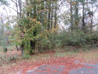 Land for sale in 4787 Washington Street, Grimesland, NC, 27837