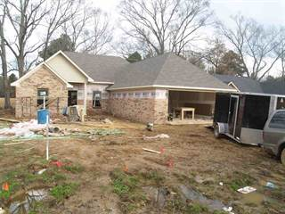 Single Family for sale in 365 GREYSTONE PTE, Terry, MS, 39170