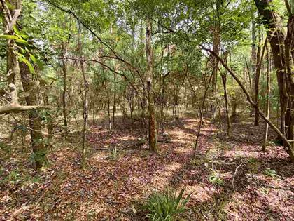 Lots And Land for sale in Vacant NE Madison Bluffs, Lee, FL, 32059