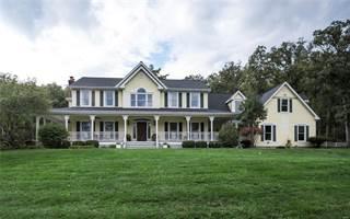 Single Family for sale in 300 Femme Osage Valley Lane, Marthasville, MO, 63357