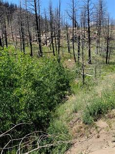 Lots And Land for sale in TBD Lower Rader Creek, Whitehall, MT, 59759