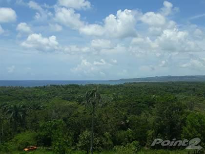 Lots And Land for sale in North  coast  Espillat 6830, Gaspar Hernandez, Espaillat