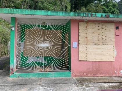 Residential Property for sale in 0 CARETERA 140 KM 48.8 FRONTON, Ciales, PR, 00638