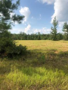 Lots And Land for sale in Nhn Pasture Rd, Perkinston, MS, 39573