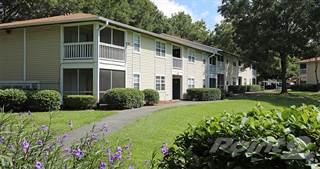 Apartment for rent in Paddock Place Apartments - The Morgan, Ocala, FL, 34474