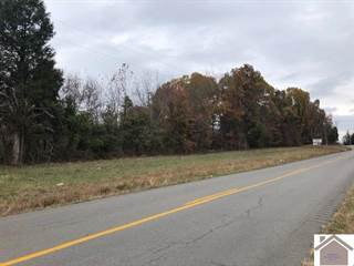 Farm And Agriculture for sale in 4509 Highway 293 North, Princeton, KY, 42445