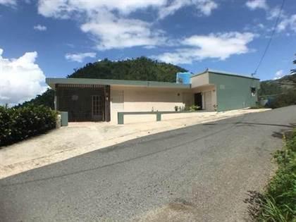 Residential Property for sale in Km 1.2 CARRETERA 810, Cedro Abajo, PR, 00719