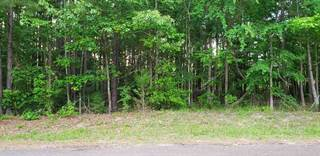 Lots And Land for sale in Tbd FORESTWOOD DR, Gilmer, TX, 75645