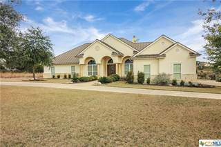 Single Family for sale in 123 Crane Circle, Spring Branch, TX, 78070