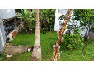Multi-family Home for sale in Bo. Palo Hincado, Barranquitas, PR, 00794