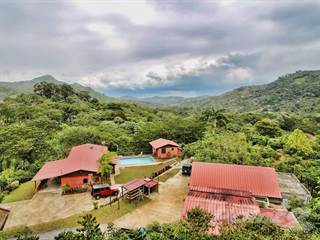 Farm And Agriculture for sale in Adjuntas Coffee Plantation, Adjuntas, PR, 00601