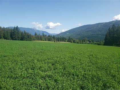 Agriculture for sale in 3090&3390 30 Street, NE, Salmon Arm, British Columbia, V1E3L1