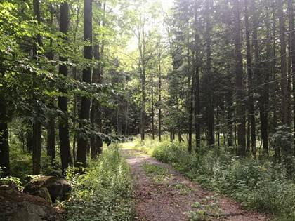 Lots And Land for sale in 114 Stanyon Park Drive, Speculator, NY, 12164
