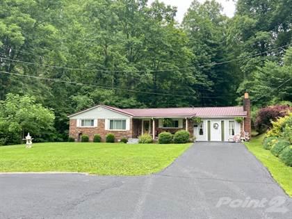 Residential Property for sale in 1641 N Wolf Creek Rd., Pilgrim, KY, 41250