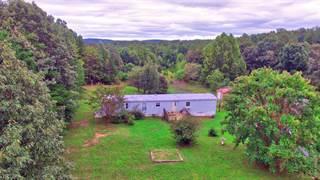 Single Family for sale in 396 Kentmoor Farm Road, Madison Heights, VA, 24572