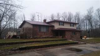 Single Family for sale in 3105 N Garfield Rd, Mount Forest, MI, 48650