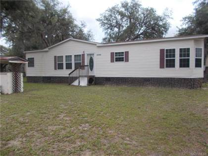 Residential Property for sale in 6085 N Tsala Apopka Drive, Hernando, FL, 34442