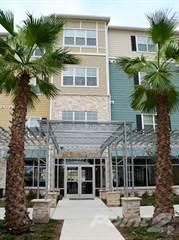 Apartment for rent in Arden Park, San Antonio, TX, 78240