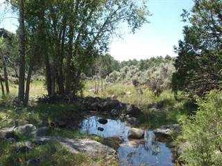 Farms Ranches Amp Acreages For Sale In New Mexico Nm Point2 Homes
