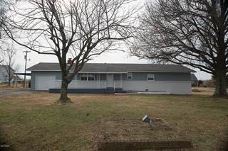 Single Family for sale in 12775 Nettle Dr, Neosho, MO, 64850