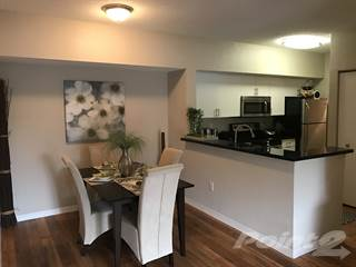 Apartment for rent in Plantation Gardens Apartments - The Tara, Pinellas Park, FL, 33782