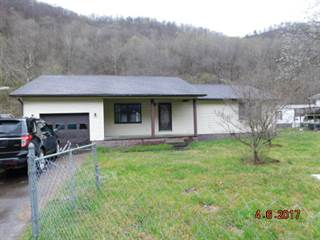 Single Family for sale in 325 MOSLEY AVENUE, Amherstdale, WV, 25607