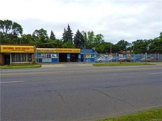 Comm/Ind for sale in 15851 W MCNICHOLS Road, Detroit, MI, 48235