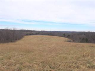 Farm And Agriculture for sale in Tbd West State Highway Bb, Greater Willard, MO, 65617