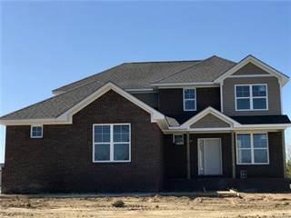 Single Family for sale in 9028 CHAMPIONSHIP Drive, Davison, MI, 48423